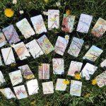 Coaching in de natuur met kaarten